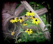 Flower Gardens Mixed Media Posters - Wagon Wheel 2 Poster by Ernie Echols