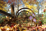 Wagon Photos - Wagon Wheel by Peter Olsen