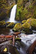 Waterfall Framed Prints - Wahclella Framed Print by Mike  Dawson