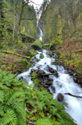 Moss Green Posters - Wahkeena Falls Oregon Waterfall Poster by Dustin K Ryan