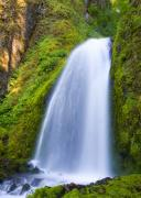 Falls Photos - Wahkeena by Mike  Dawson