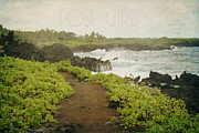 Kings Point Framed Prints - Waianapanapa Framed Print by Sharon Mau
