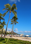 Diamond Head Framed Prints - Waikiki Framed Print by Kerri Ligatich
