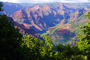 Waimea Prints - Waimea Canyon Kauai Print by Kevin Smith