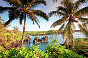 Tropical Destinations Prints - Wainapanapa, Maui, Hawaii Print by M.M. Sweet