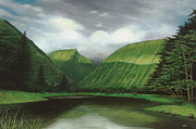 Honokaa Pond Prints - Waipio Print by Wallace Kong