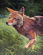 Coyote Art Paintings - Wait For It by Patricia A Griffin