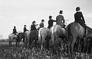 Women Horseback Riding Prints - Waiting And Watching Print by John Chillingworth