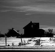 Farm Framed Prints Photos - Waiting By The Pain by Jerry Cordeiro