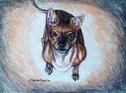 Paws Drawings Framed Prints - Waiting For a Treat Framed Print by Shana Rowe