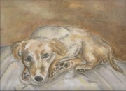 Tired On Bed Prints - Waiting For a Walk Print by Jo Anne Kikel