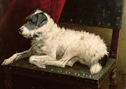Pup Painting Framed Prints - Waiting for Master Framed Print by George Paice