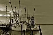 Shrimp Boat Prints - Waiting for the big catch  Print by Susanne Van Hulst