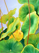 Lotus Paintings - Waiting For The Sun by Robert Hooper