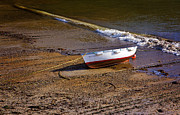 Beached Photos - Waiting for the Tide by Louise Heusinkveld