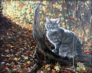 Waiting In The Woods Print by Sandra Chase