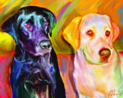 Black Lab Digital Art Framed Prints - Waiting Framed Print by Karen Derrico
