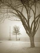 Winter Storm Metal Prints - Waiting Out the Storm Metal Print by Tara Turner