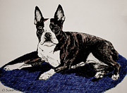 Brindle Drawings Posters - Wake Up Poster by Susan Herber