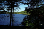 Concord Metal Prints - Walden Pond End Of Summer Metal Print by Lawrence Christopher