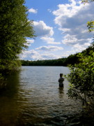 Walden Pond Photo Posters - Walden Pond  Poster by Rae Breaux