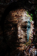 Face Prints - Waldgeist Print by Christopher Gaston