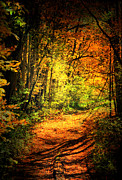 Fall Scene Posters - Walk The Trail Poster by Emily Stauring