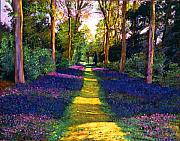 Flowers Impressionist Paintings - Walk Through Blue by David Lloyd Glover