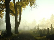 Tombstones Posters - Walk Through The Hazy Cemetery Poster by Gothicolors With Crows