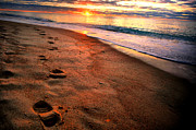 Atlantic Beaches Photo Posters - Walk To Work Poster by Emily Stauring