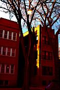 Chicago Art - Walk-ups in Vivid Light by Peter DeCamp
