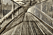 Naomi Framed Prints - Walking Bridge at Lake Naomi Framed Print by Jack Paolini