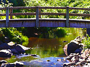 Glenna McRae - Walking Bridge at Otter Crest