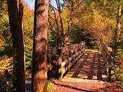 John Malone - Walking Bridge in the Fall