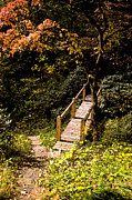 Fall Framed Prints Prints Prints - Walking Bridge Print by Paul Pobiak