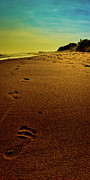 Hamptons Photo Prints - Walking off into the Sunset Print by David Hahn