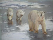 Arctic Pastels - Walking on Ice by Jackie  Hill