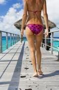 Buttock Prints - Walking on Ocean Pier Print by Monica & Michael Sweet - Printscapes