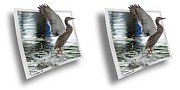 Crossview Framed Prints - Walking On Water - Gently cross your eyes and focus on the middle image Framed Print by Brian Wallace