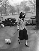 Full Skirt Photos - Walking The Dog by H F Davis