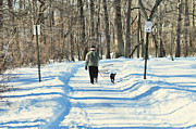 Winter Scene Prints - Walking the dog Print by Paul Ward
