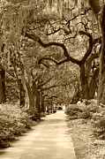 Live Art Prints - Walking Through the Park in sepia Print by Suzanne Gaff