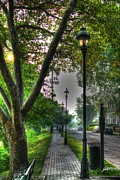 Lightpole Framed Prints - Walkway down Riverside Drive Framed Print by Jeremy Lankford