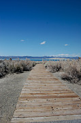 Hot Creek Art - Walkway to Mono Lake by Kirk Williams