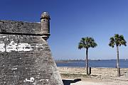 Historic Site Posters - Wall and Tower with Palm Trees Poster by George Oze