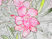 Pink Flower Prints Originals - Wall  Flower by Dennis Dugan