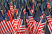 Flag Of Usa Photo Prints - Wall of US Flags Print by Carolyn Marshall