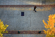 Street Photography Digital Art - Wall Street Looking Down by Gray  Artus