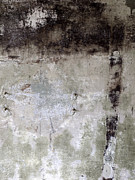 Painterly Photos - Wall Texture Number 11 by Carol Leigh