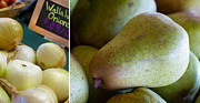 Onions Photos - Walla Walla Pear by Rebecca Cozart